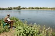 Солнце светит, солнце жарит,   Не укрыться и в тени. Кто работою не занят – У реки проводят дни.