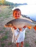 Сазаны входят в семейство карповых, и относятся к лучеперым рыбам.
